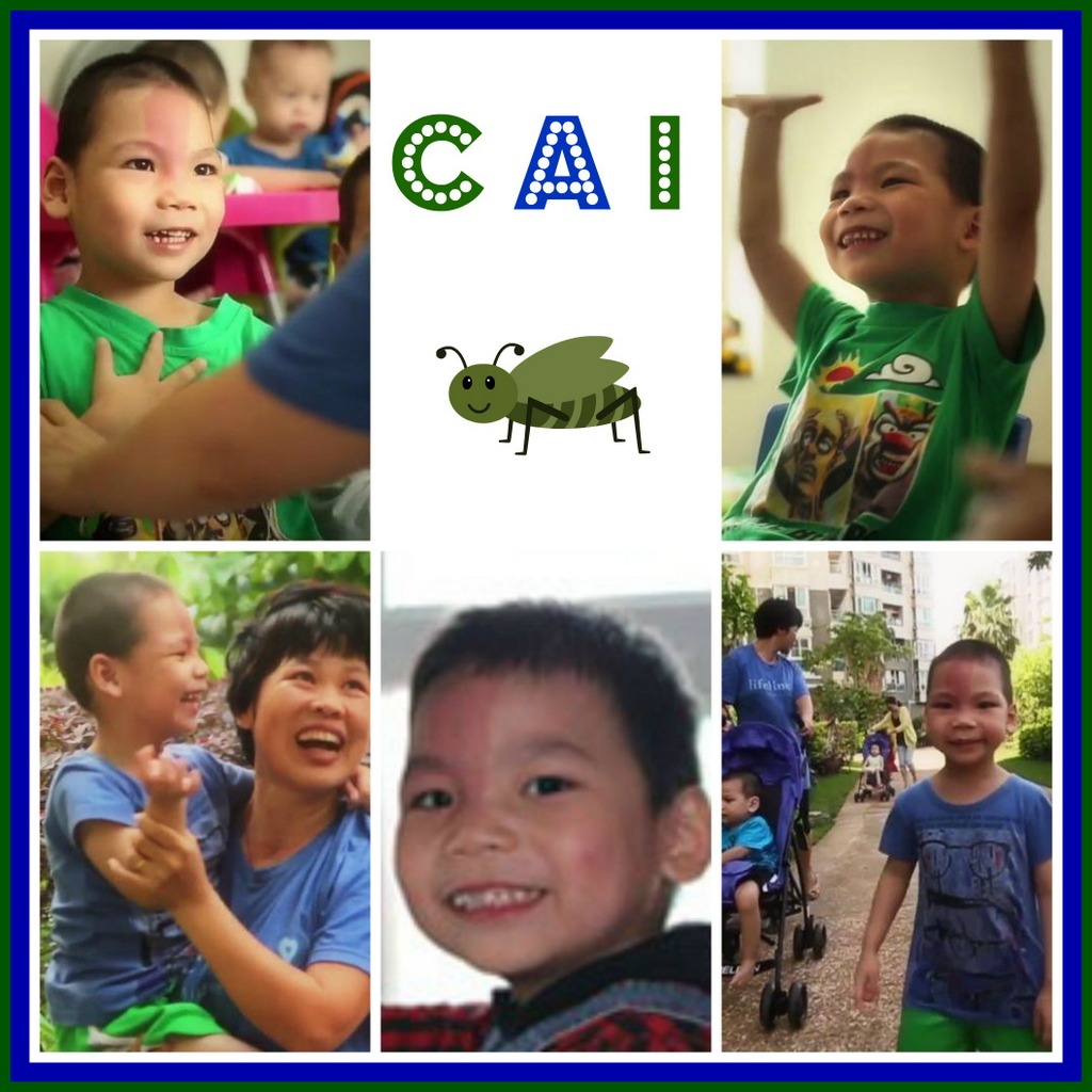 Cai Collage