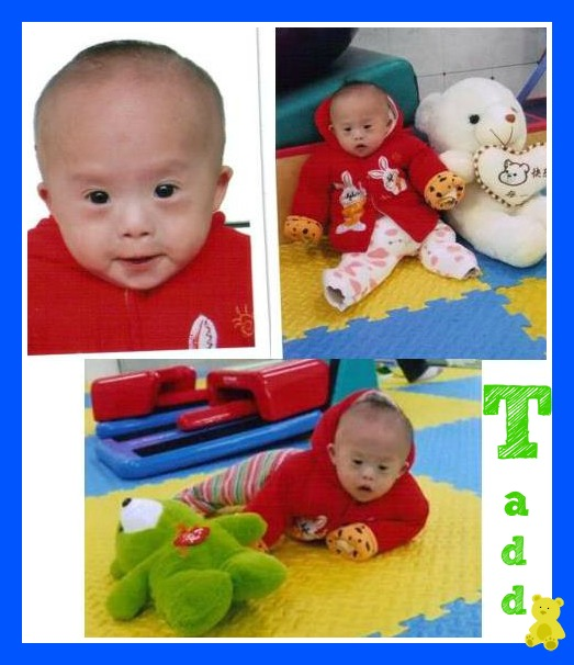 Tadd collage