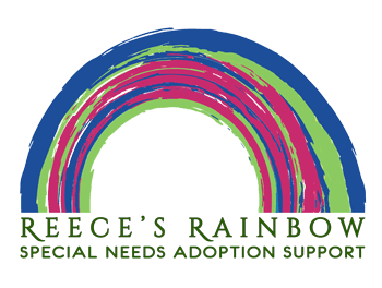 Reece's Rainbow Down Syndrome Adoption Grant Foundation